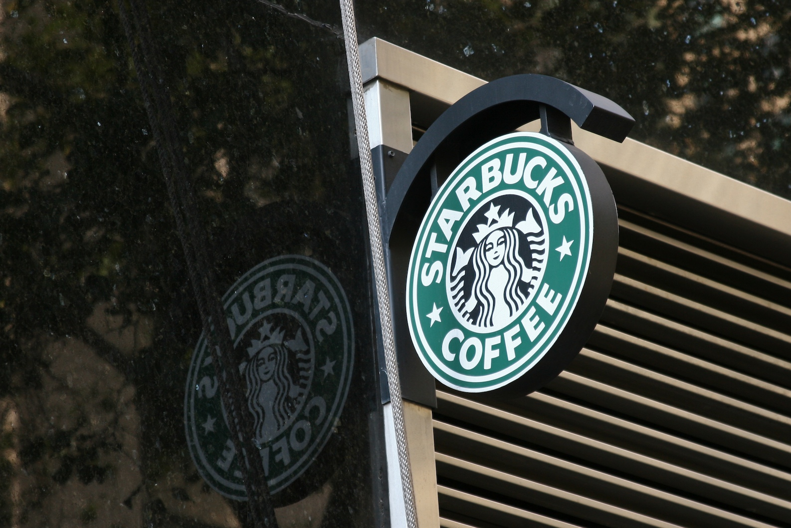 Starbucks reflected logo